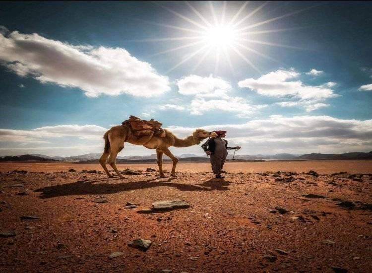 Revelion la Petra